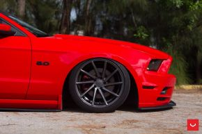 FORD MUSTANG | CVT