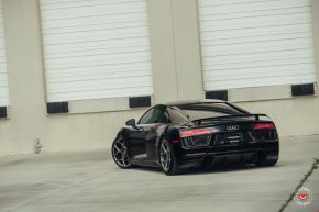 Audi R8 | CG-205