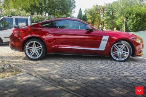 Ford Mustang GT | VFS-5