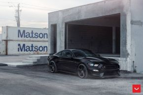 Ford Mustang GT 350 | VFS-5