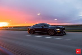 FORD MUSTANG GT | HF-2