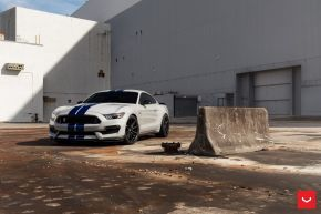 Ford Mustang GT350 | HF-3