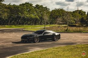 Ford Mustang GT | M-X4T
