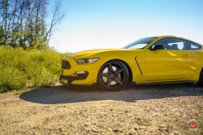 Ford Mustang | GNS-1